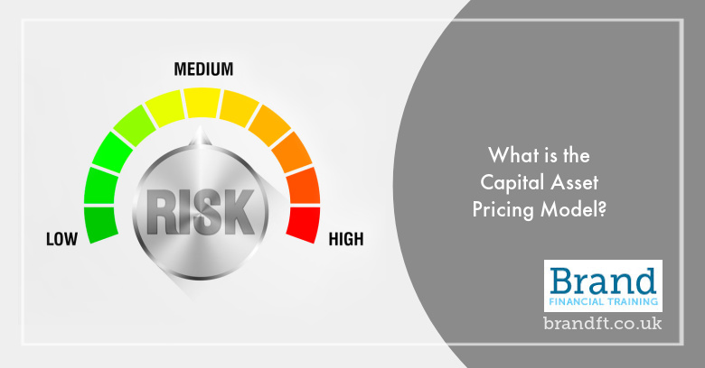 What is the Capital Asset Pricing Model?