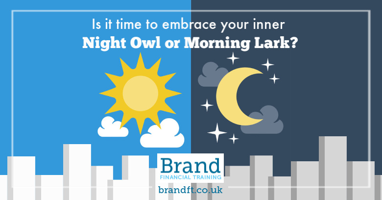 Is it time to embrace your inner night owl or morning lark?